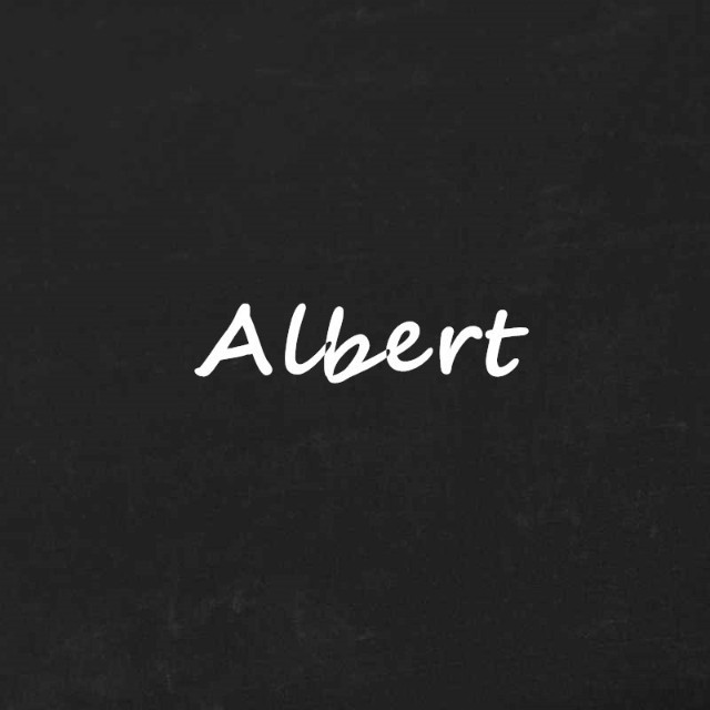 Albert的运营说